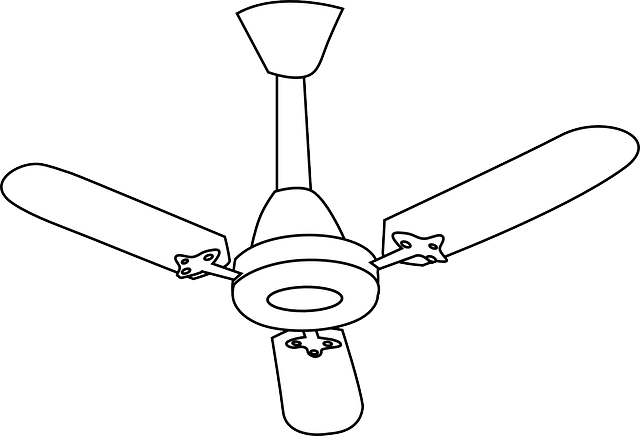 Ceiling Fan - Sonray Service Team